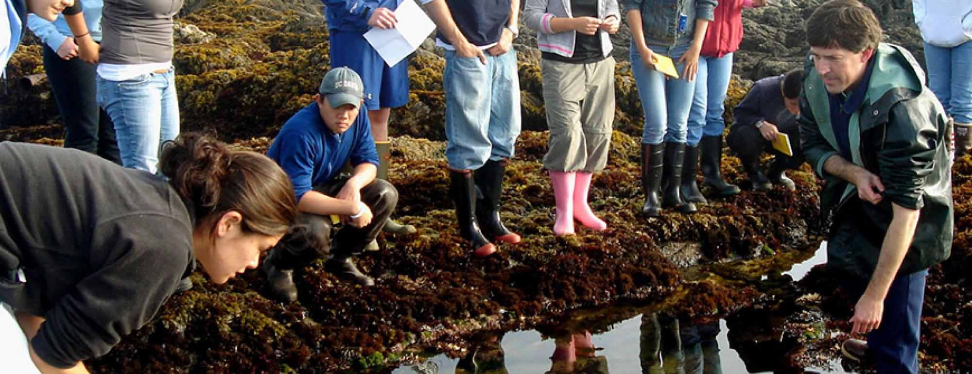 Students at tide pool