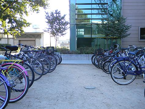 Bicycles parked in front of the Earth and Physical Sciences Building.